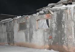 Kar birikintisi nedeniyle ahırın çatısı çöktü: 2 büyükbaş hayvan telef oldu