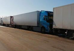 Rusya sınırında bekleyen TIRlardaki 5 bin ton domates çöpe gidecek