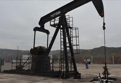 Rosneftin net karı 2019da yüzde 29 arttı