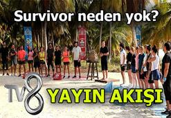 Survivor neden yok, yeni bölüm ne zaman Survivor 2020 hangi günler yayınlanıyor TV8 yayın akışı