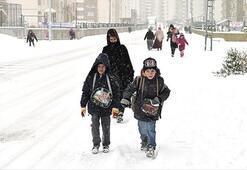 Ağrı, Van ve Hakkaride yarın okullar tatil mi (20 Şubat)