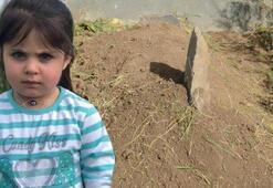 Leyla Aydemir cinayetinde gizli tanıktan şok iddialar