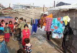 Afganistanda son 5 yılda 4 milyon kişi evlerinden oldu
