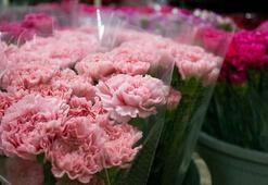 Türk çiçeği 50 ülkenin kadınları için hazırlanıyor