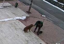 Temizlik işçisi ile sokak köpeğinin dostluğu