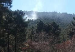 Son dakika... İstanbulda orman yangını Ekipler bölgede...