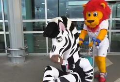 Lyon ve Juventus maskotlarının eğlenceli anları...