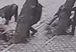 Manisada 2 pitbullun saldırdığı köpeği 3 vatandaş kurtardı