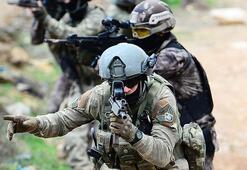 PKKya şubat ayında ağır darbe