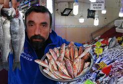 Sıcak havalar balık fiyatlarını düşürdü