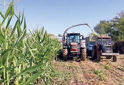 'Tarımda kooperatif örgütlenmesi gerekli'
