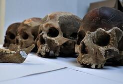 Antropoloji Nedir Antropoloji Bölümü Ne İş Yapar