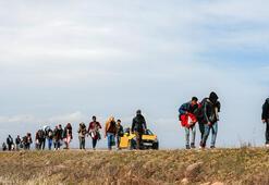 Son dakika: Almanyadan göçmen kararı Reşit olmayan göçmenler...