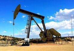 Petrol fiyatları ne kadar Petrol fiyatları neden düşüyor