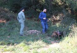 İntihar eden cinayet zanlısı iz takip köpekleri tarafından bulundu