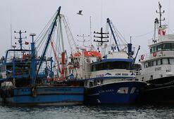 Karadeniz'de balık av sezonu erken kapanıyor