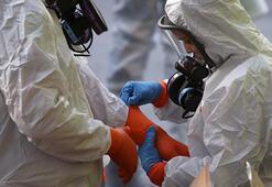 Kırgızistanda ilk corona virüsü vakası tespit edildi