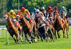 Tarım ve Orman Bakanı Pakdemirli at yarışlarının ertelendiği açıkladı