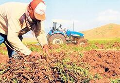 Çiftçilere 1.6 milyar lira destek