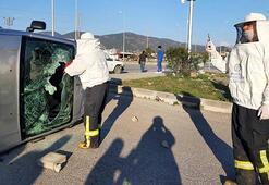 Kaza sonrası arılar kovanlardan çıktı, ekipler zor anlar yaşadı