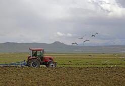 TÜİKten çiftçi maliyetlerine ilişkin yeni endeks