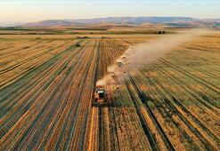 Tarım-GFE ocakta yıllık yüzde 8,99 arttı