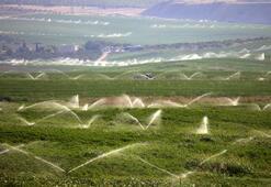 Kırıkkaleli çiftçilere yıllık 11 milyon liralık gelir artışı sağlandı
