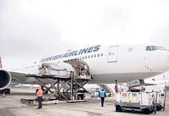 THY'nin yolcu uçakları kargo taşıması yapıyor