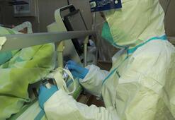 Çinde son iki günde yurt içi kaynaklı yeni corona virüsü vakası görülmedi