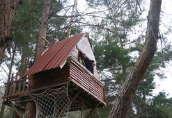 Corona virüsten korunmak için yaptıkları ağaç evde kalıyorlar