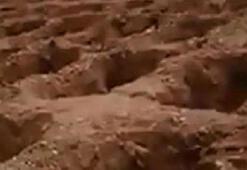 Gaziantepteki toplu mezar paylaşımına 3 gözaltı
