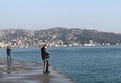 Tarabya Sahilinde şok görüntü Yasağı çiğneyip balık tuttular