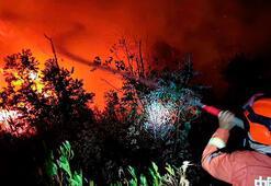Çinde orman yangını: 19 ölü