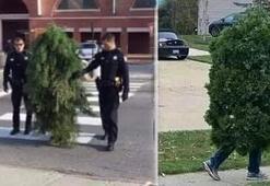 Sokağa çıkma yasağını ağaç kılığında deldiği iddia edilmişti... İşte gerçek