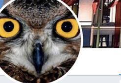 Twitterdaki Ankara Kuşu kimdir Ankara Kuşu Oktay Yaşar mı