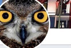 FETÖ soruşturmasında Ankara Kuşu adlı hesabın kullanıcısı tutuklandı
