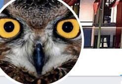 Ankara Kuşu ile ilgili soruşturmanın detayları ortaya çıktı