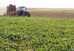 Tarım Sigortaları Havuzu 2019'da 1,3 milyar TL hasar ödemesi yaptı