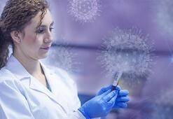 Koronavirüse karşı umutlandıran çalışmalar