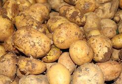 Endişelenmeyin, patates sıkıntımız olmaz