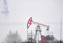 OPEC: Küresel petrol stok kapasitesi mayısta dolabilir
