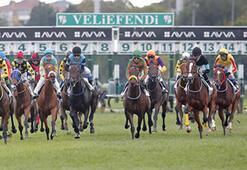 Tarım ve Orman Bakanlığı: At yarışları için Mayıs ayının ilk haftasında karar vereceğiz