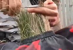 Körelmek istemeyen Bursalı berber çiçek tıraşına başladı