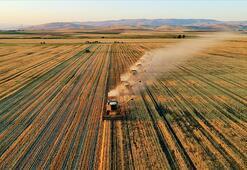 Hazineye ait atıl tarım arazileri üretime açılıyor