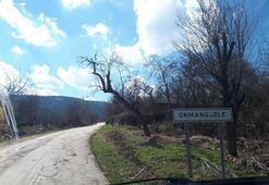 Bilecik'in Ormangüzle köyü karantinaya alındı