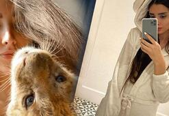 Lüks rezidansta yavru aslan ve piton besleyen İranlı manken yakalandı