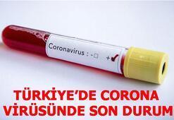 Türkiyede corona virüs vaka ve ölü sayısı Corona virüs vaka ve can kaybı kaç oldu