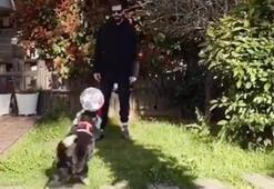 İsmail Demirci köpeğiyle top oyandı