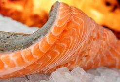 Somon balığı yok satıyor