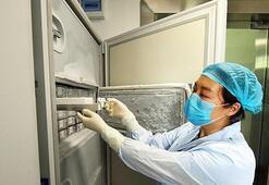 Vuhanda 1500 virüsün saklandığı fotoğraf basına sızdı